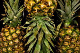 Packed Pineapple